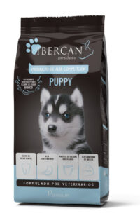 Ibercan puppy Agriserena